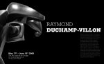Art Institute Of Chicago Raymond Duchamp-Villon Poster